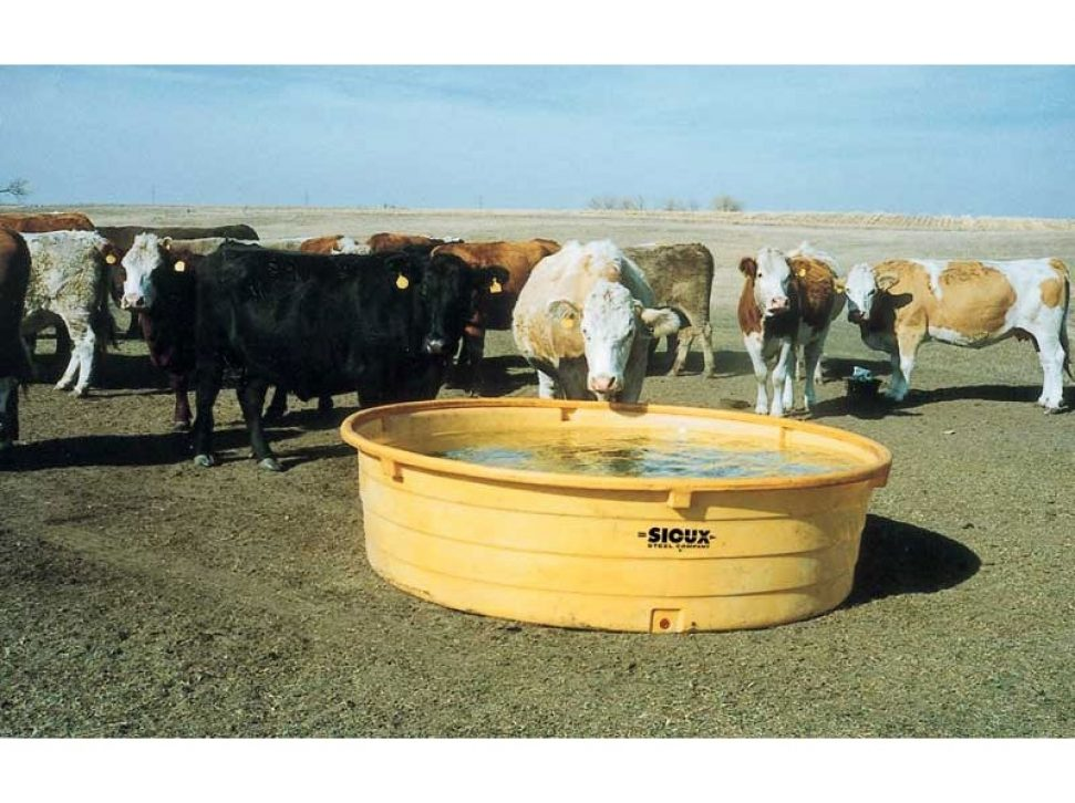 Round Poly Tank being used by cows